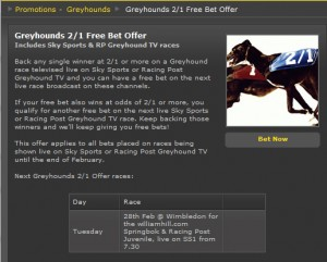 Free Greyhound Racing Bet at Bet365